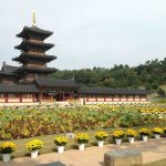 The five-story pagoda and lotus pond recreated from 1500 years ago