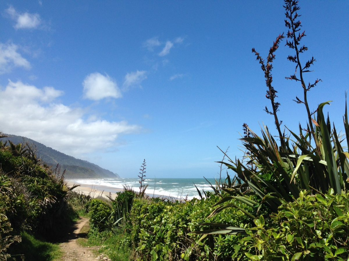 Holiday hiking on the Heaphy Track