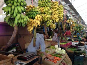 A bustling fruit market. So many bananas!