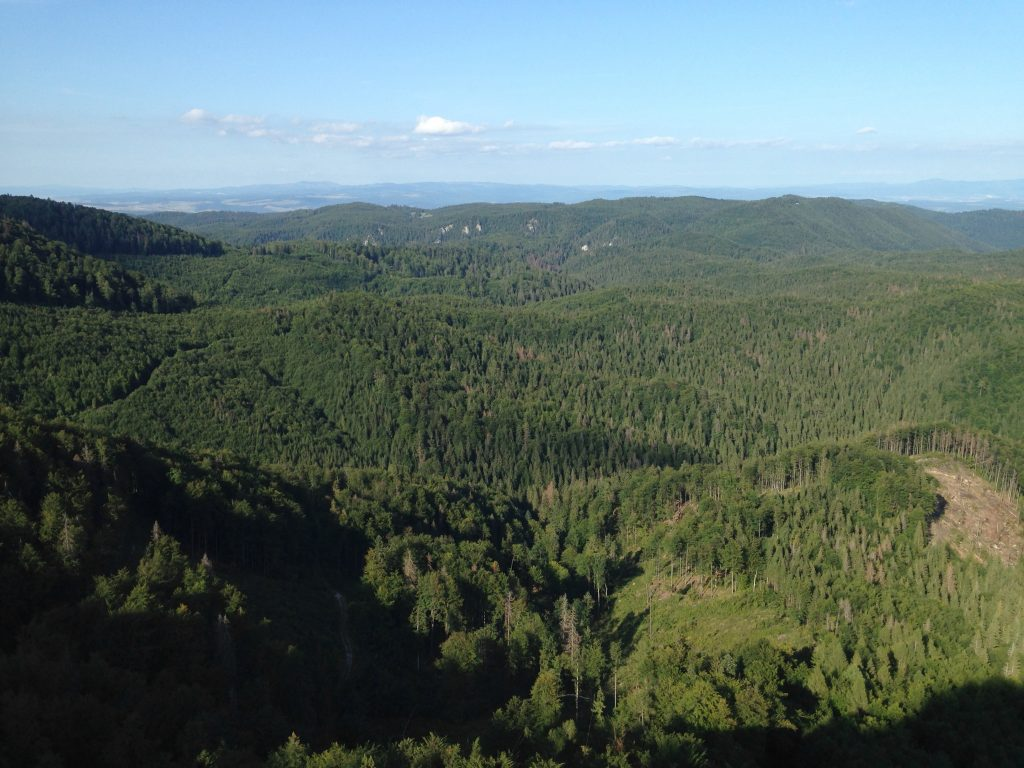 View from the top of Havrania Skala. Spis Castle is just visible in the top right.