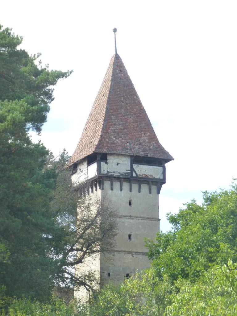 The tower in Alțâna